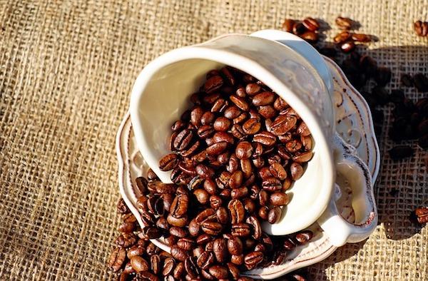 Biokaffee online kaufen
